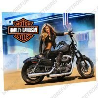 Harley Davidson Girl Alternate Alternate Pinball Translite Alternative Flipper Backglass Stern Sega